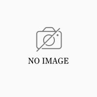 栃木市大平町西水代 賃貸アパート